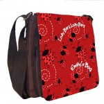 Lady Bird Personalised Gift Handbag, Small Messenger, School, Sleepover Bag.