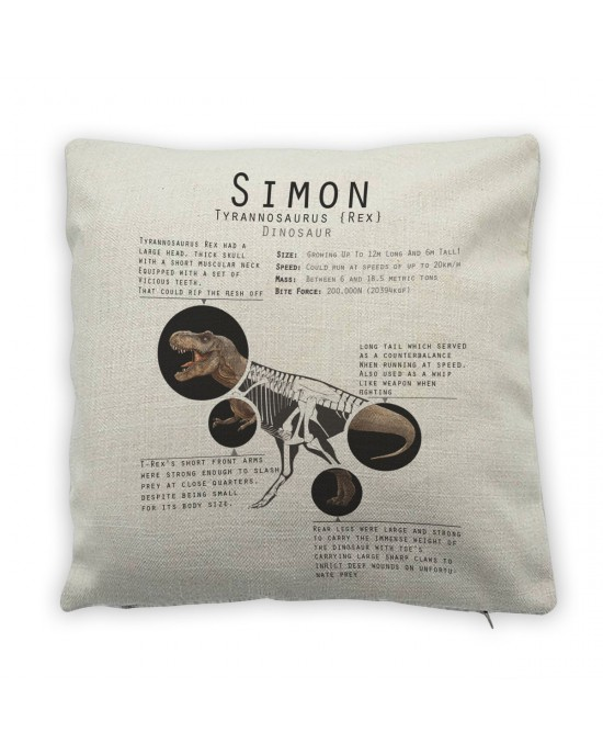 Personalised T-Rex Facts cushion. Great Gift For Kids Bedrooms