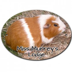 Pet Hutch, Door, Name, Plaque, Sign. Personalised With Your Pets Name and Photo